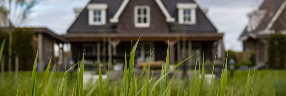 4 Simple Tips to Make Your Exterior Curb Appeal Standout